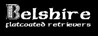 Belshire Sticky Logo